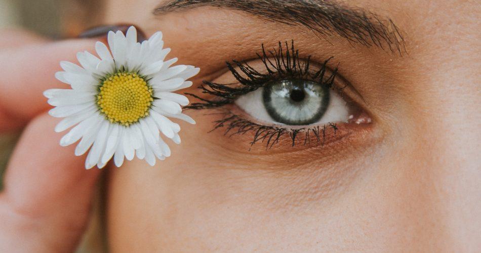 Frau hält Gänseblümchen neben ihre Augen